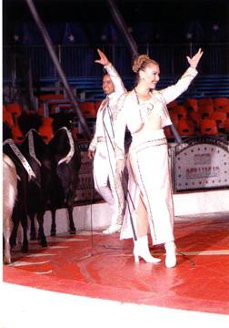 Albina Horses