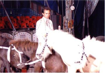 Luis Horses